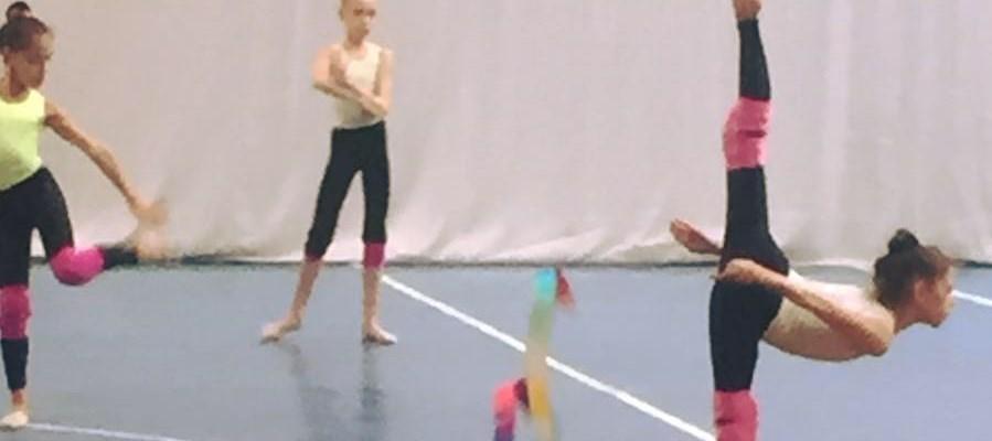 Gimnastica Ritmica si Aerobica